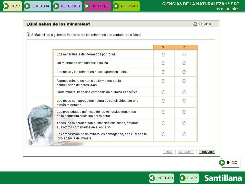 INICIO ESQUEMA RECURSOS INTERNET ACTIVIDAD INICIO ANTERIOR SALIR