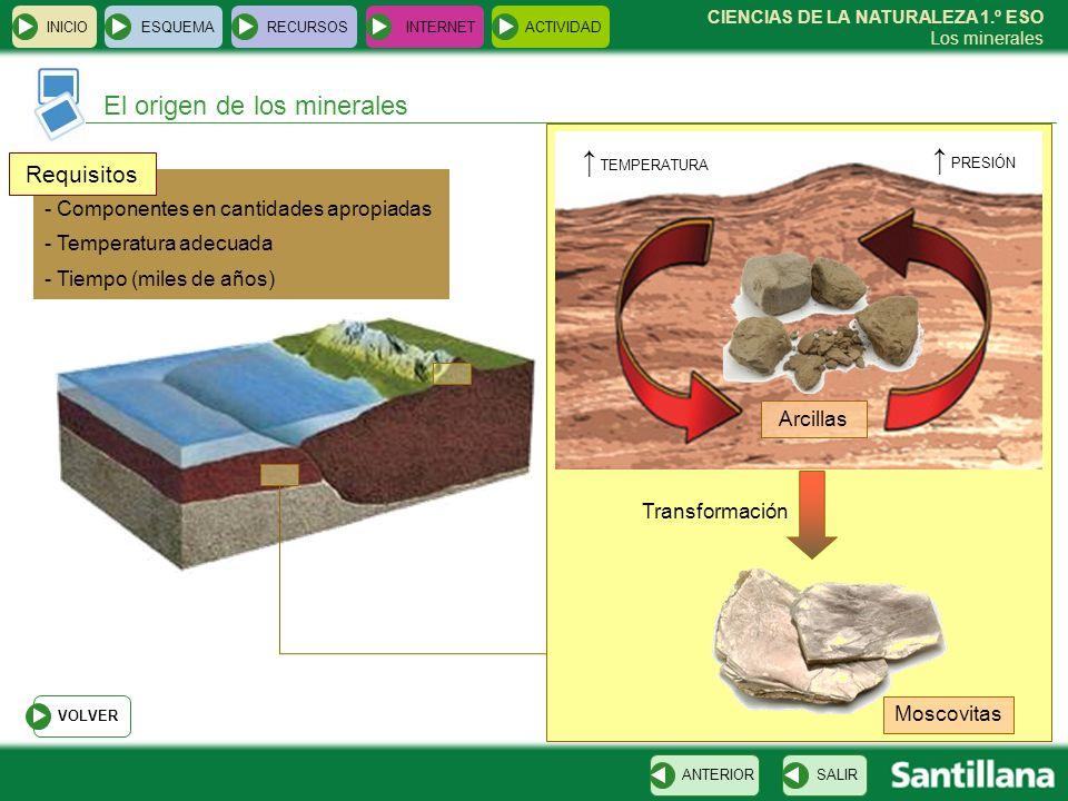 ↑ TEMPERATURA ↑ PRESIÓN El origen de los minerales Requisitos