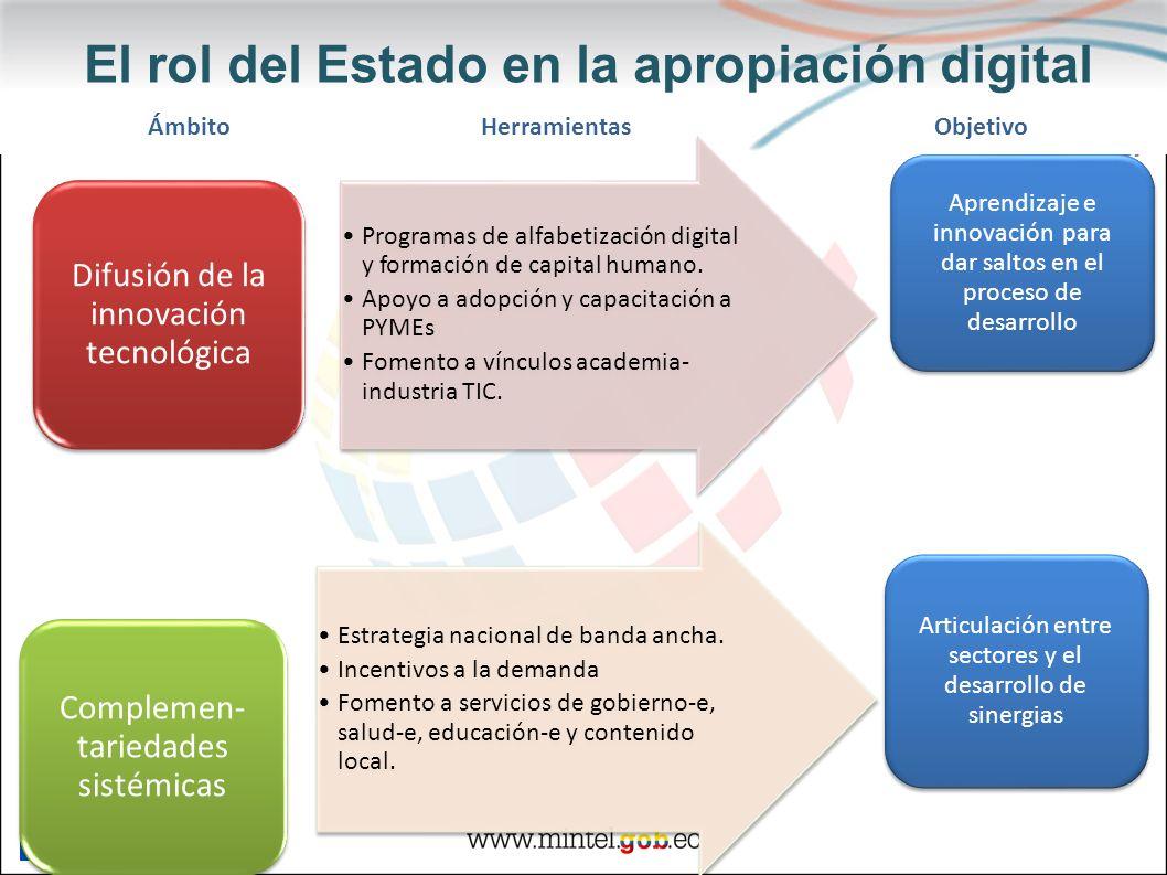 El rol del Estado en la apropiación digital