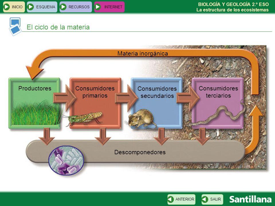 El ciclo de la materia Materia inorgánica Productores