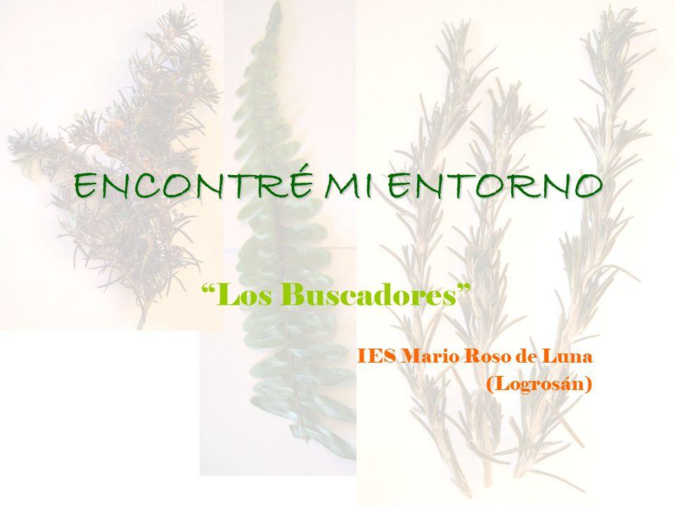 Los Buscadores IES Mario Roso de Luna (Logrosán)