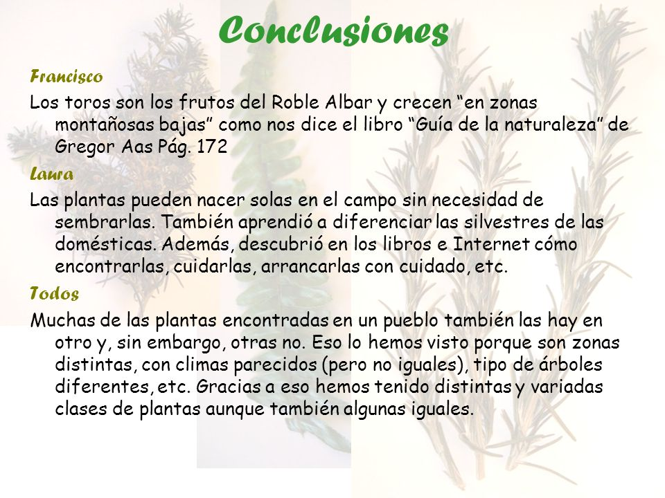 Conclusiones Francisco