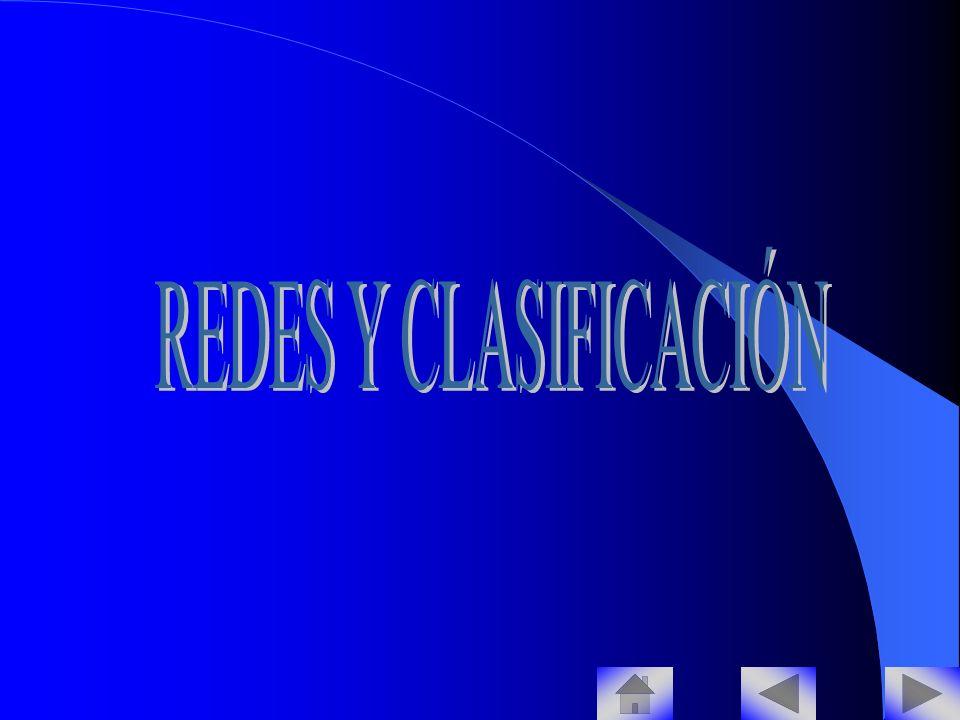 REDES Y CLASIFICACIÓN