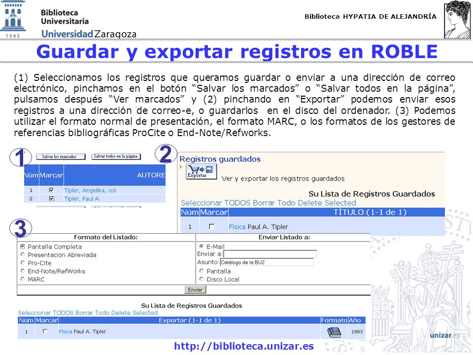 Guardar y exportar registros en ROBLE