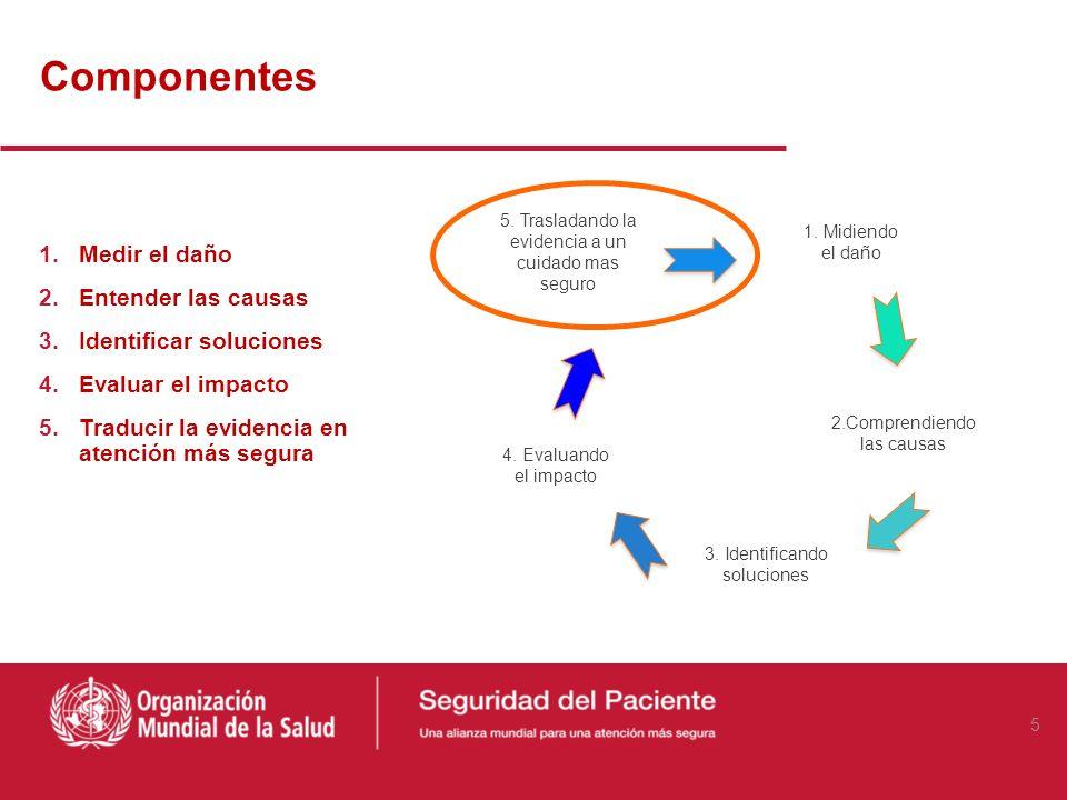 Componentes Medir el daño Entender las causas Identificar soluciones