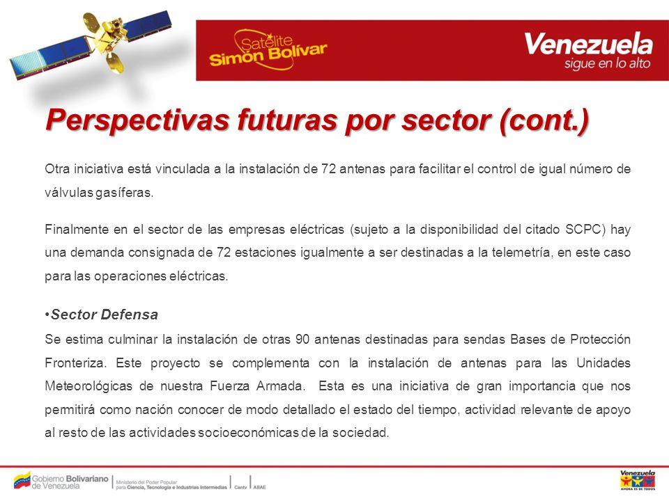Perspectivas futuras por sector (cont.)