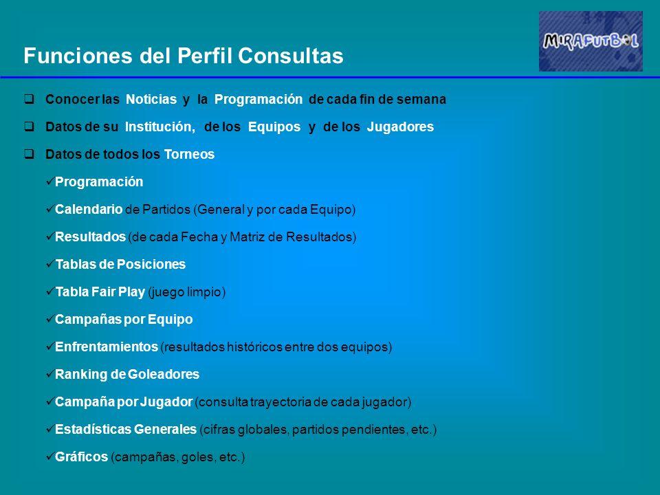 Funciones del Perfil Consultas