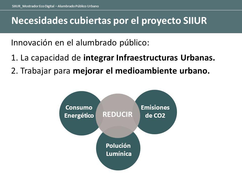 Necesidades cubiertas por el proyecto SIIUR