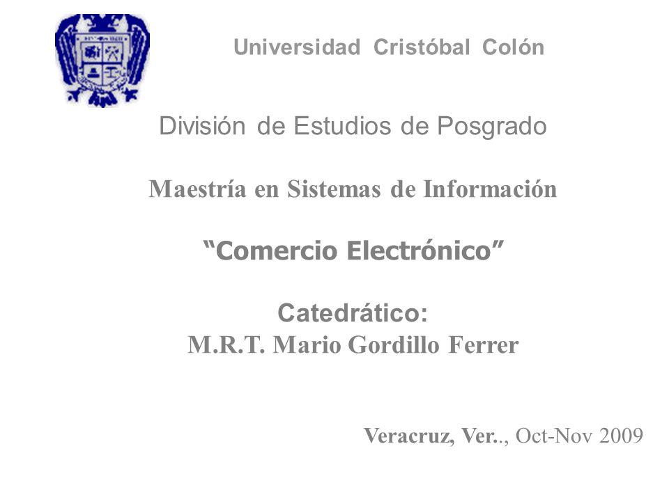 División de Estudios de Posgrado Maestría en Sistemas de Información