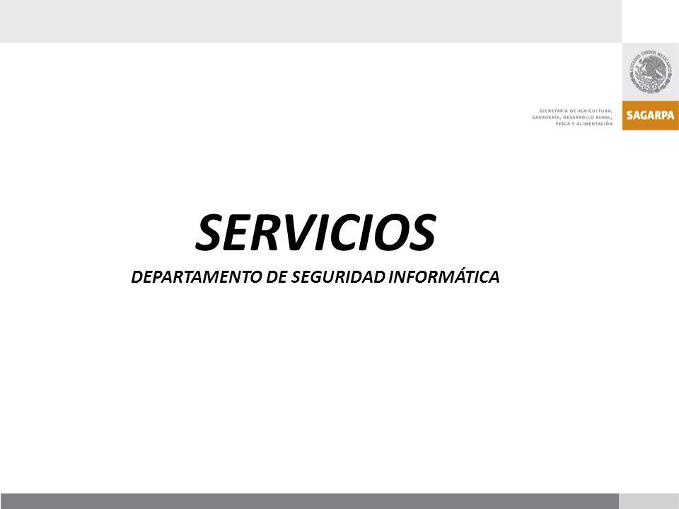 DEPARTAMENTO DE SEGURIDAD INFORMÁTICA