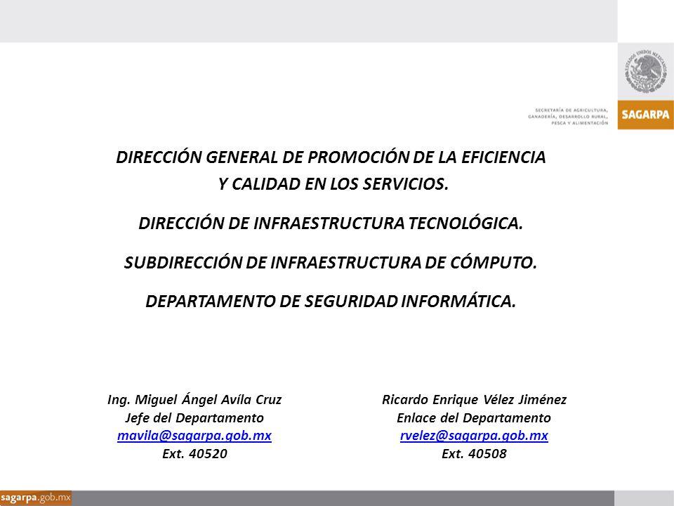 DIRECCIÓN GENERAL DE PROMOCIÓN DE LA EFICIENCIA