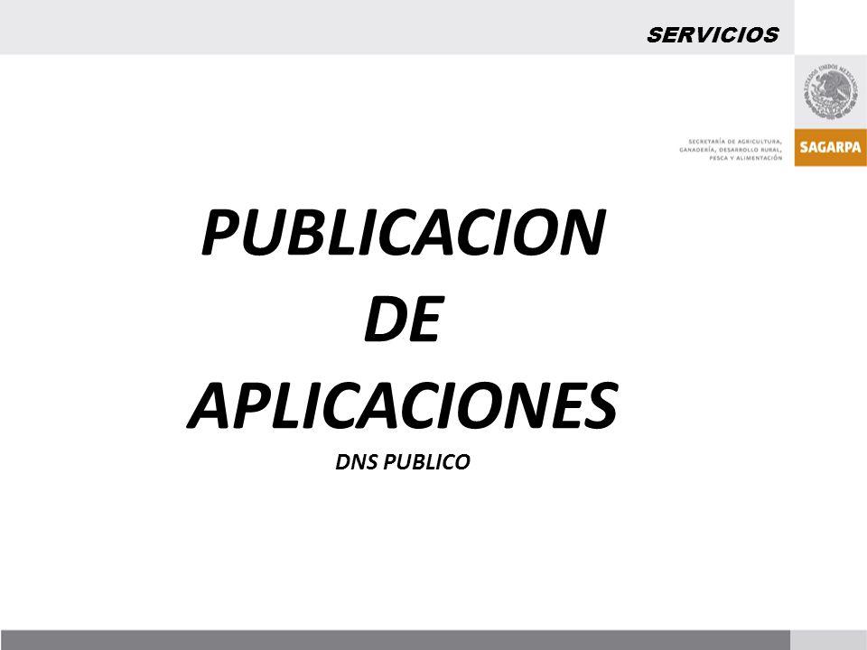 PUBLICACION DE APLICACIONES