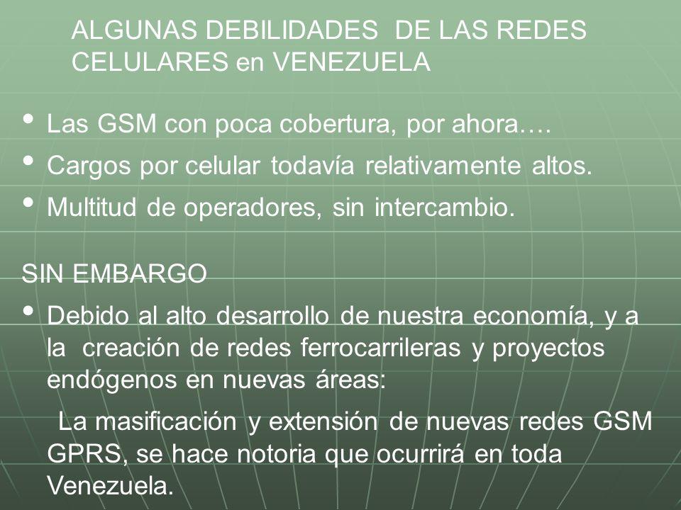 ALGUNAS DEBILIDADES DE LAS REDES
