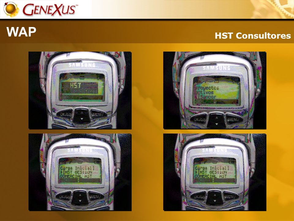 WAP HST Consultores.