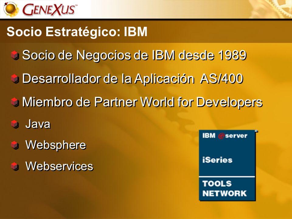Socio Estratégico: IBM