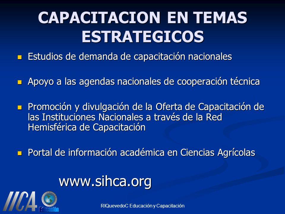 CAPACITACION EN TEMAS ESTRATEGICOS
