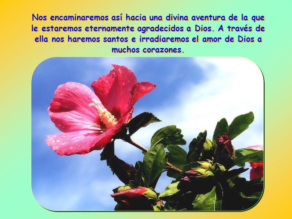 Nos encaminaremos así hacia una divina aventura de la que le estaremos eternamente agradecidos a Dios.