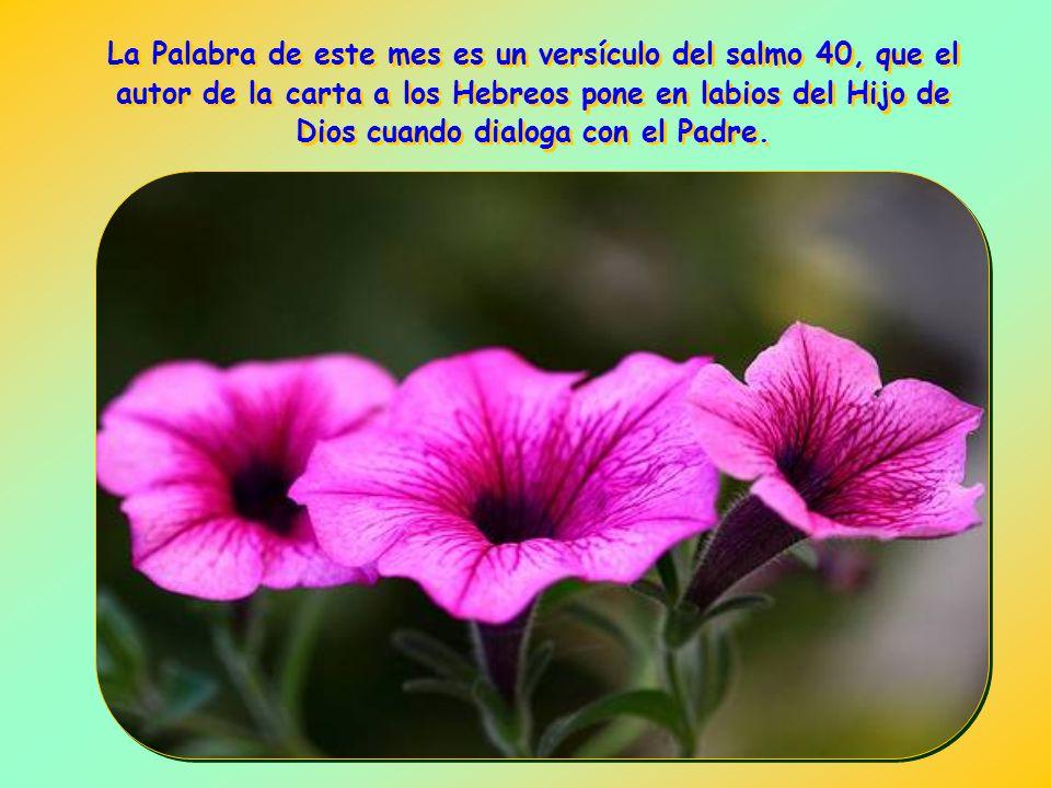 La Palabra de este mes es un versículo del salmo 40, que el autor de la carta a los Hebreos pone en labios del Hijo de Dios cuando dialoga con el Padre.