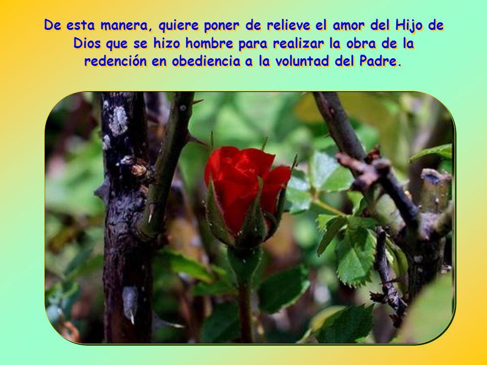 De esta manera, quiere poner de relieve el amor del Hijo de Dios que se hizo hombre para realizar la obra de la redención en obediencia a la voluntad del Padre.