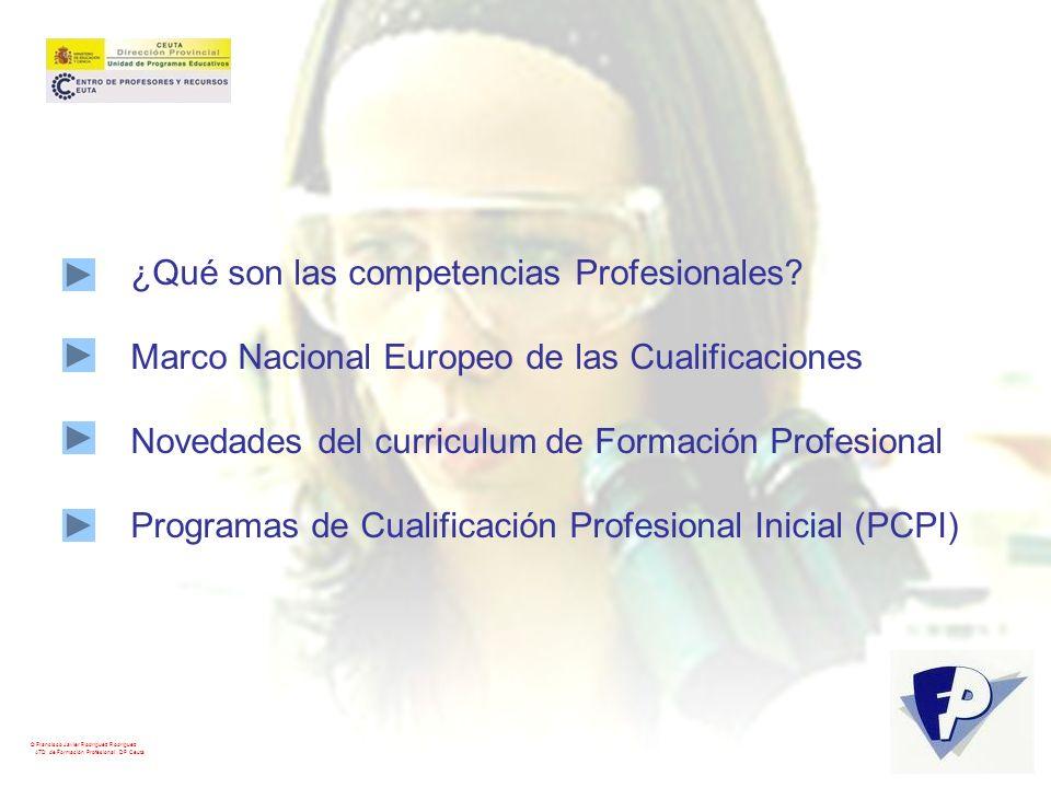 ¿Qué son las competencias Profesionales
