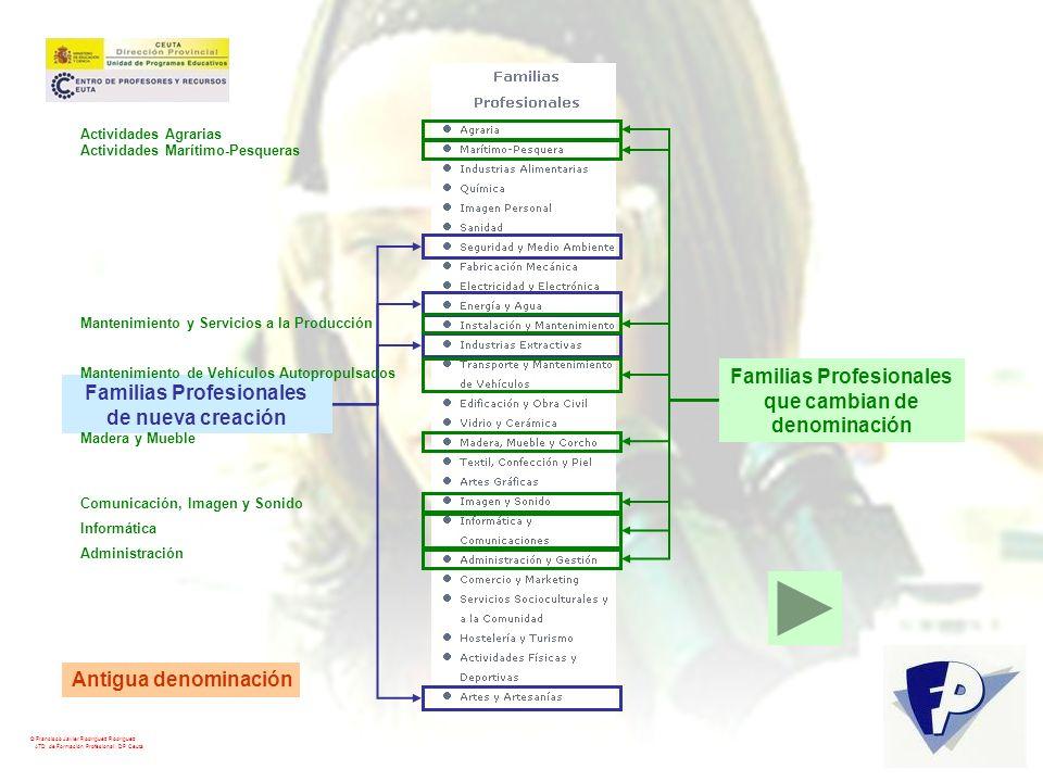 Familias Profesionales que cambian de denominación