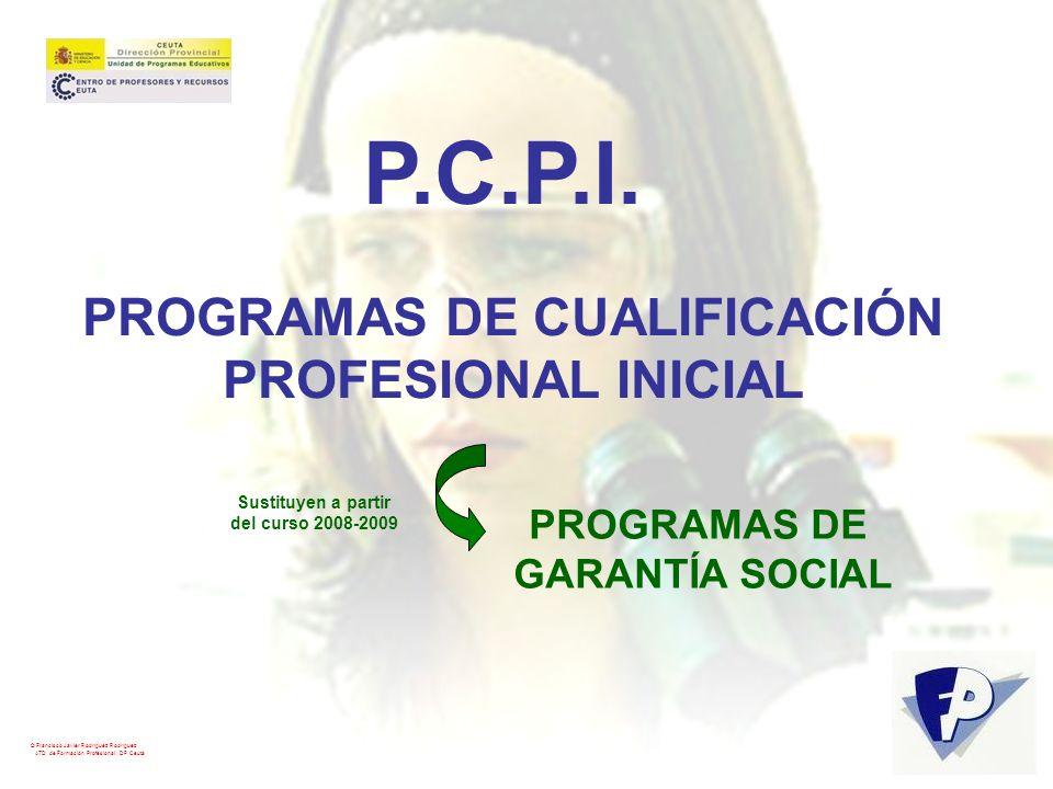 PROGRAMAS DE CUALIFICACIÓN