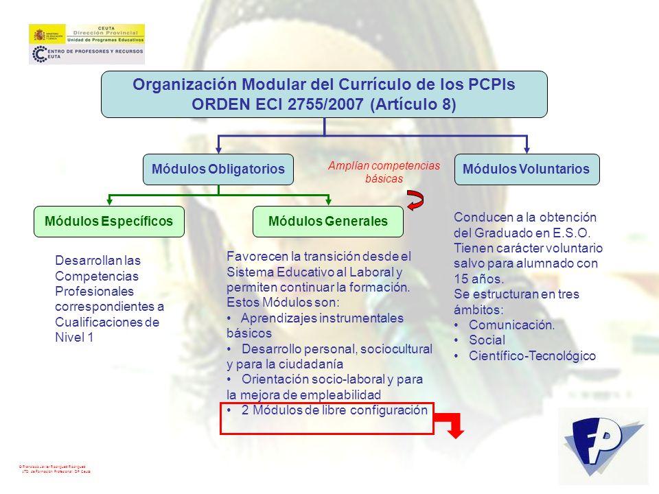 Organización Modular del Currículo de los PCPIs