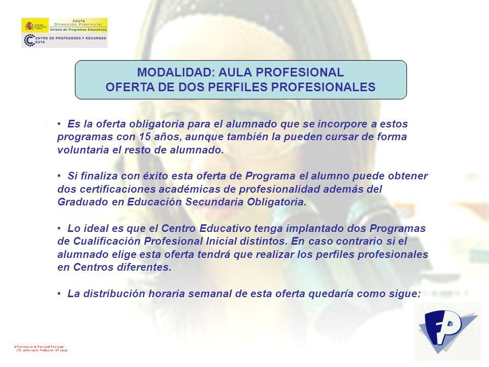 MODALIDAD: AULA PROFESIONAL OFERTA DE DOS PERFILES PROFESIONALES