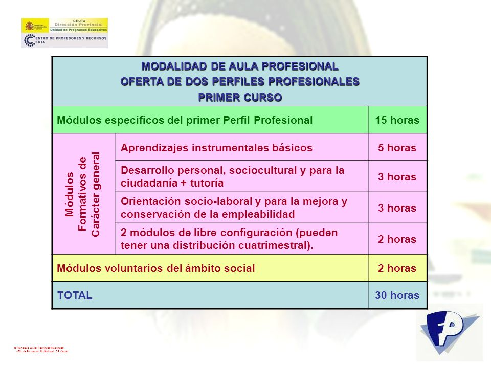 MODALIDAD DE AULA PROFESIONAL OFERTA DE DOS PERFILES PROFESIONALES