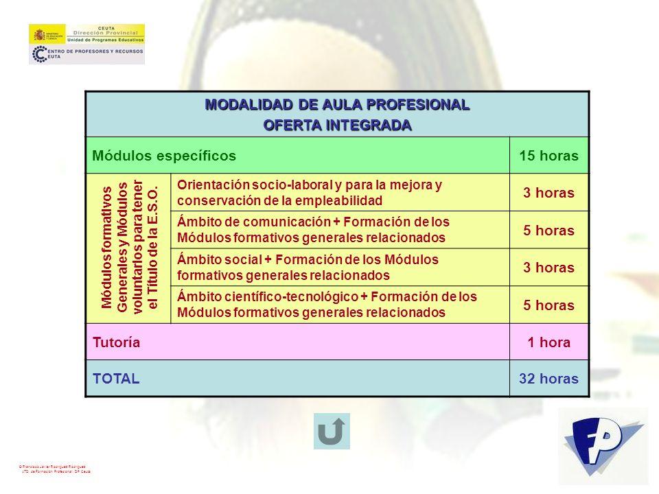 MODALIDAD DE AULA PROFESIONAL voluntarios para tener
