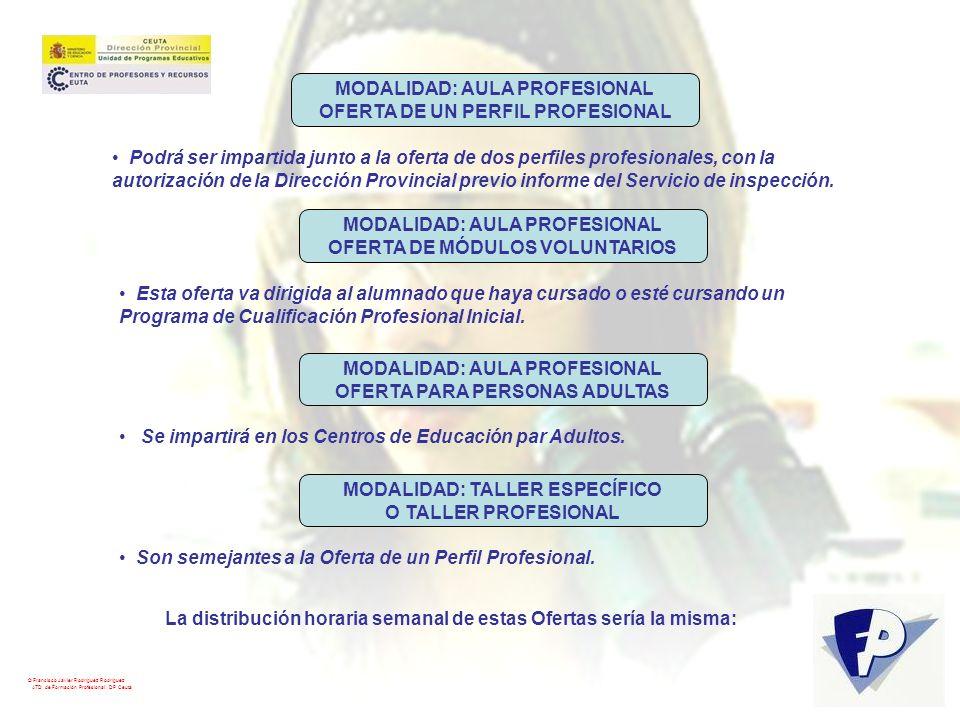 MODALIDAD: AULA PROFESIONAL OFERTA DE UN PERFIL PROFESIONAL
