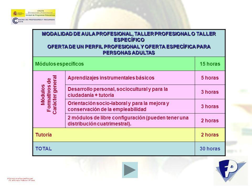 MODALIDAD DE AULA PROFESIONAL, TALLER PROFESIONAL O TALLER ESPECÍFICO