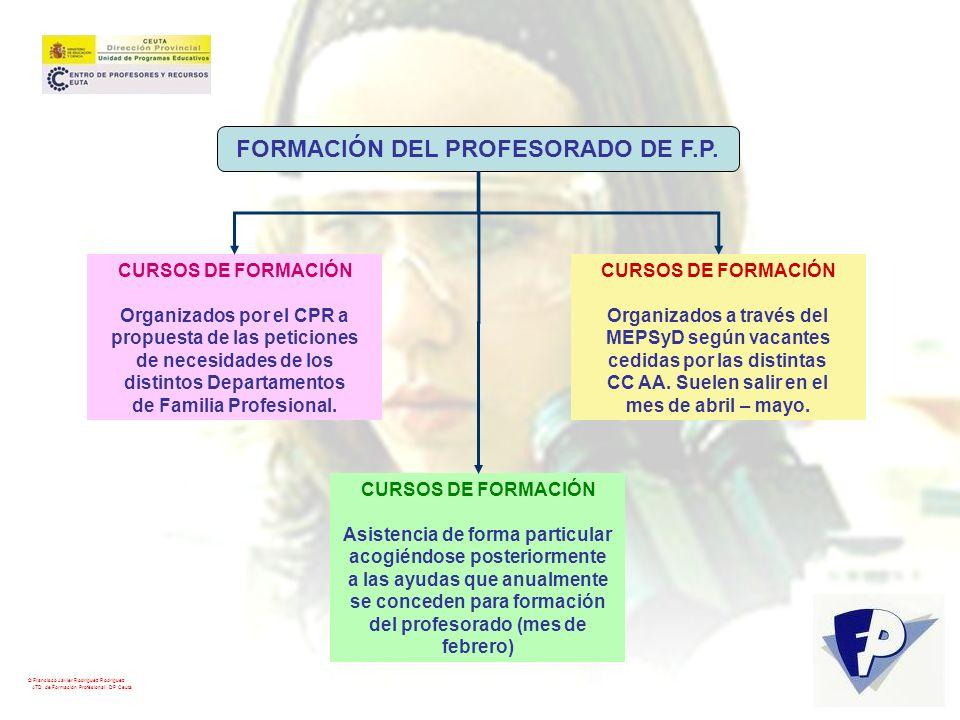 FORMACIÓN DEL PROFESORADO DE F.P.