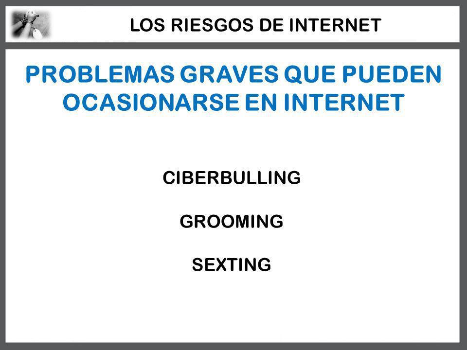 PROBLEMAS GRAVES QUE PUEDEN OCASIONARSE EN INTERNET