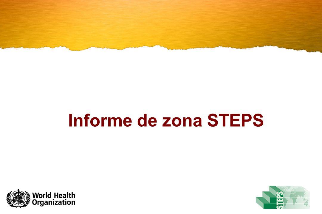Informe de zona STEPS