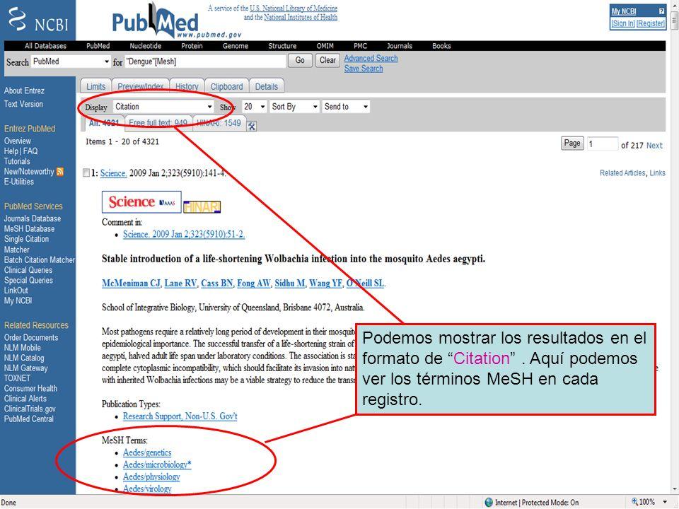 Dengue 6Podemos mostrar los resultados en el formato de Citation . Aquí podemos ver los términos MeSH en cada registro.