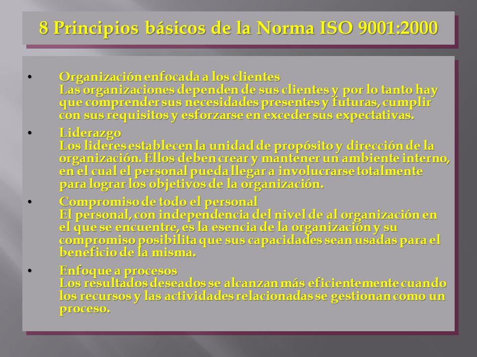 8 Principios básicos de la Norma ISO 9001:2000
