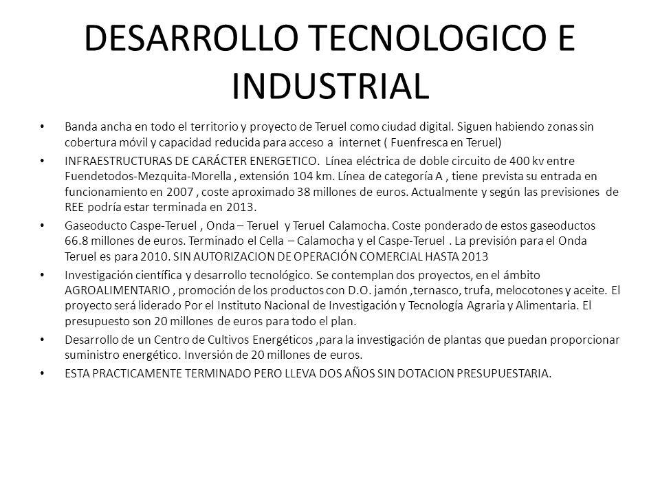 DESARROLLO TECNOLOGICO E INDUSTRIAL
