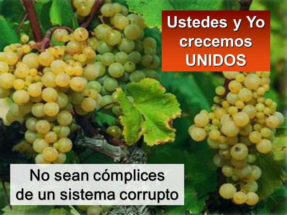 Ustedes y Yo crecemos UNIDOS No sean cómplices de un sistema corrupto