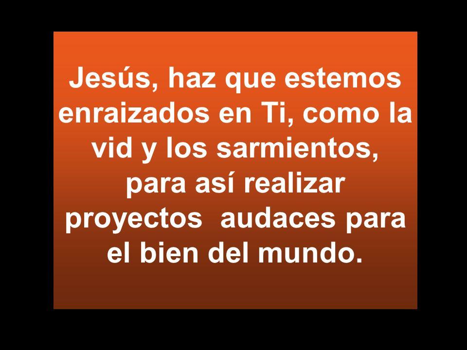 Jesús, haz que estemos enraizados en Ti, como la vid y los sarmientos, para así realizar proyectos audaces para el bien del mundo.