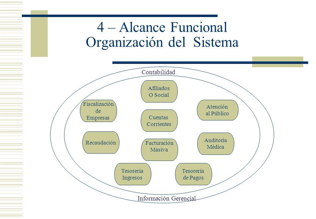 4 – Alcance Funcional Organización del Sistema