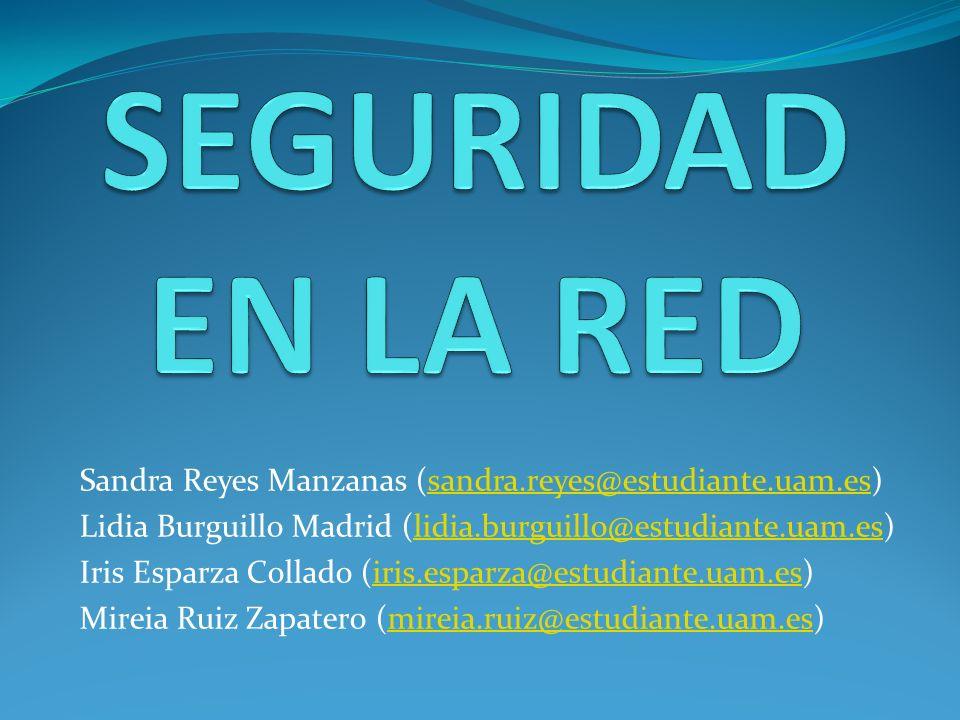 SEGURIDAD EN LA RED Sandra Reyes Manzanas (sandra.reyes@estudiante.uam.es) Lidia Burguillo Madrid (lidia.burguillo@estudiante.uam.es)