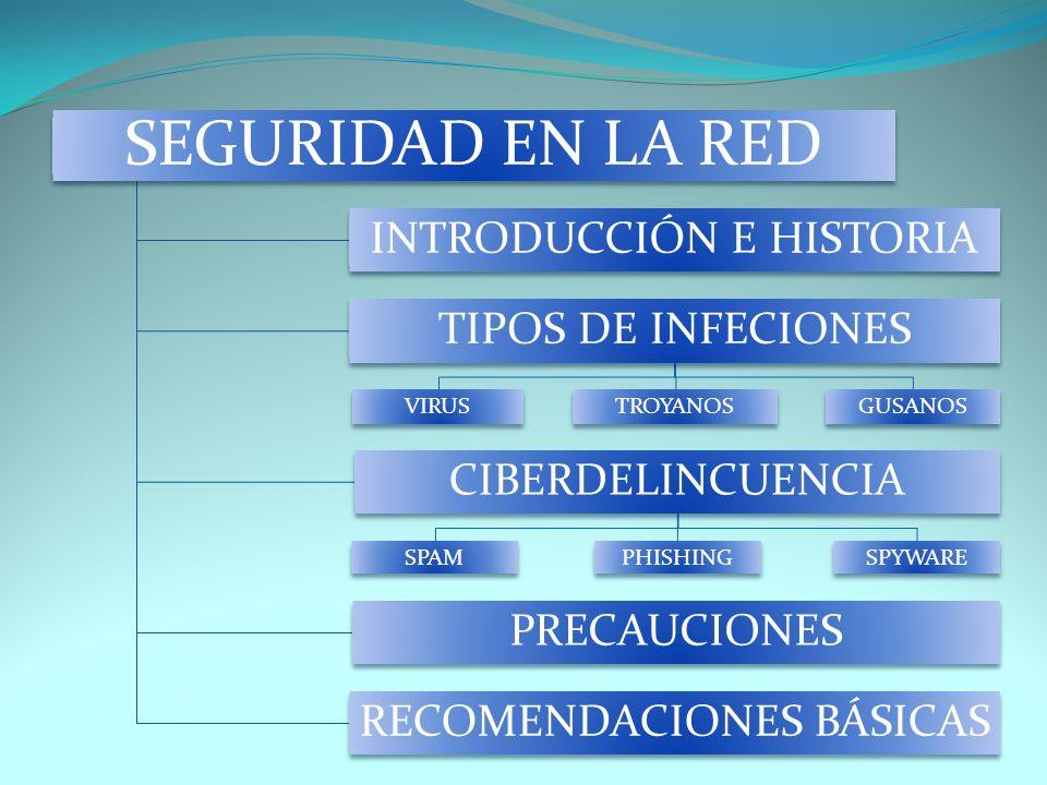 SEGURIDAD EN LA RED INTRODUCCIÓN E HISTORIA TIPOS DE INFECIONES