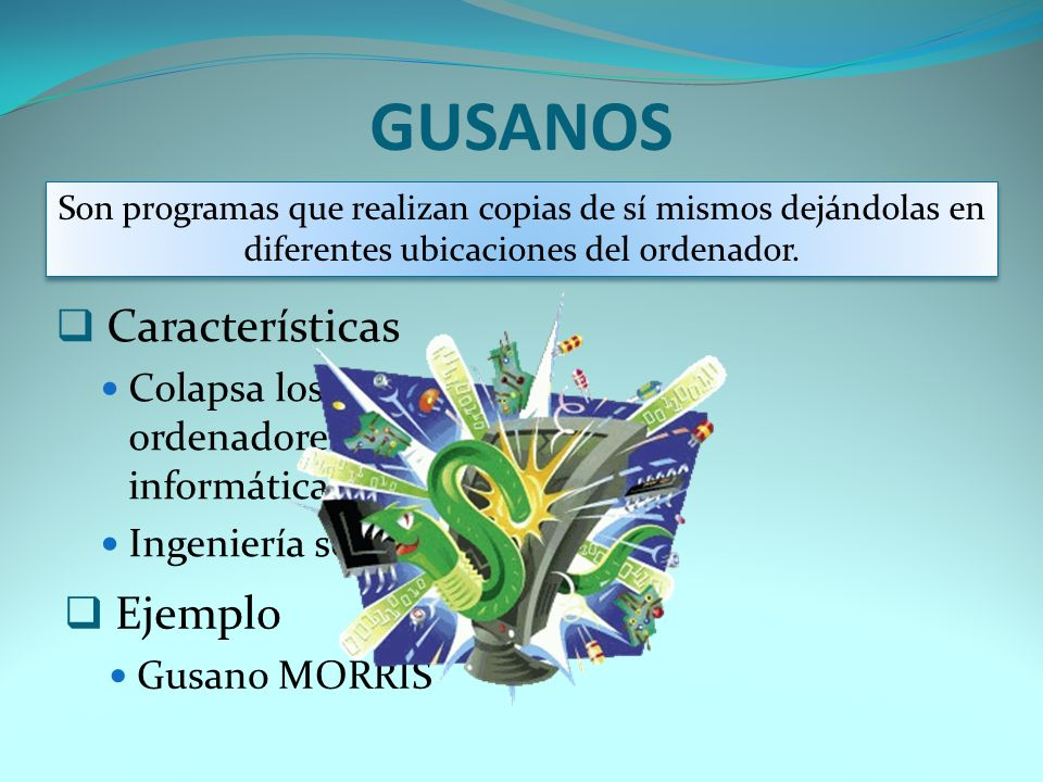 GUSANOS Características Ejemplo