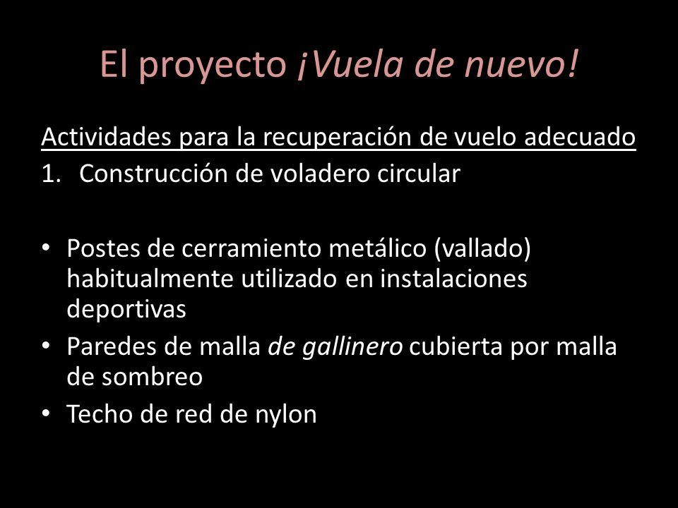 El proyecto ¡Vuela de nuevo!