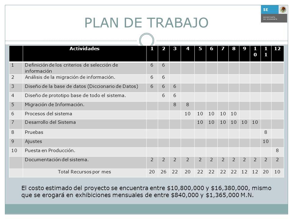 PLAN DE TRABAJO Actividades. 1. 2. 3. 4. 5. 6. 7. 8. 9. 10. 11. 12. Definición de los criterios de selección de información.