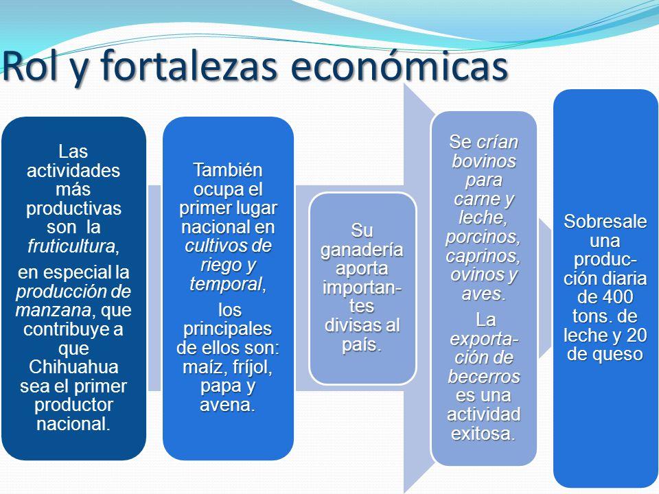 Rol y fortalezas económicas