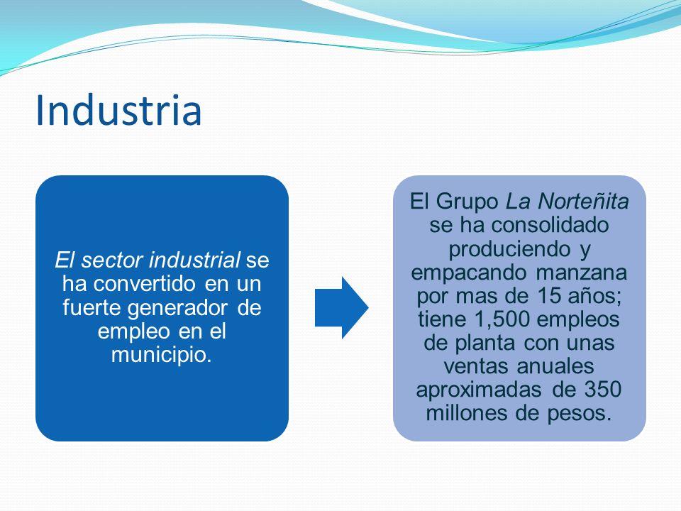 Industria El sector industrial se ha convertido en un fuerte generador de empleo en el municipio.