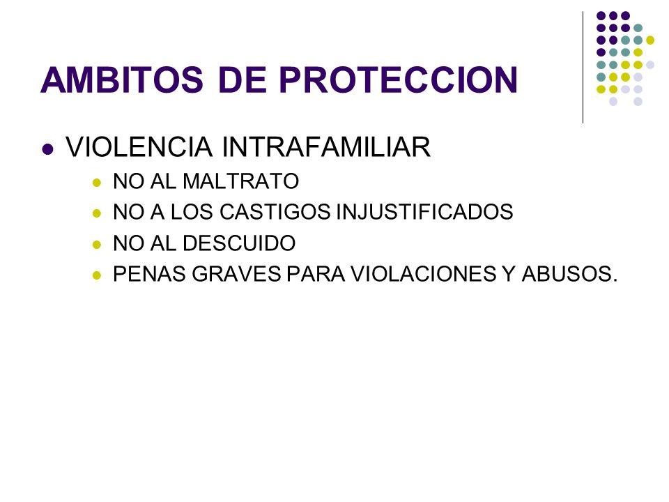 AMBITOS DE PROTECCION VIOLENCIA INTRAFAMILIAR NO AL MALTRATO
