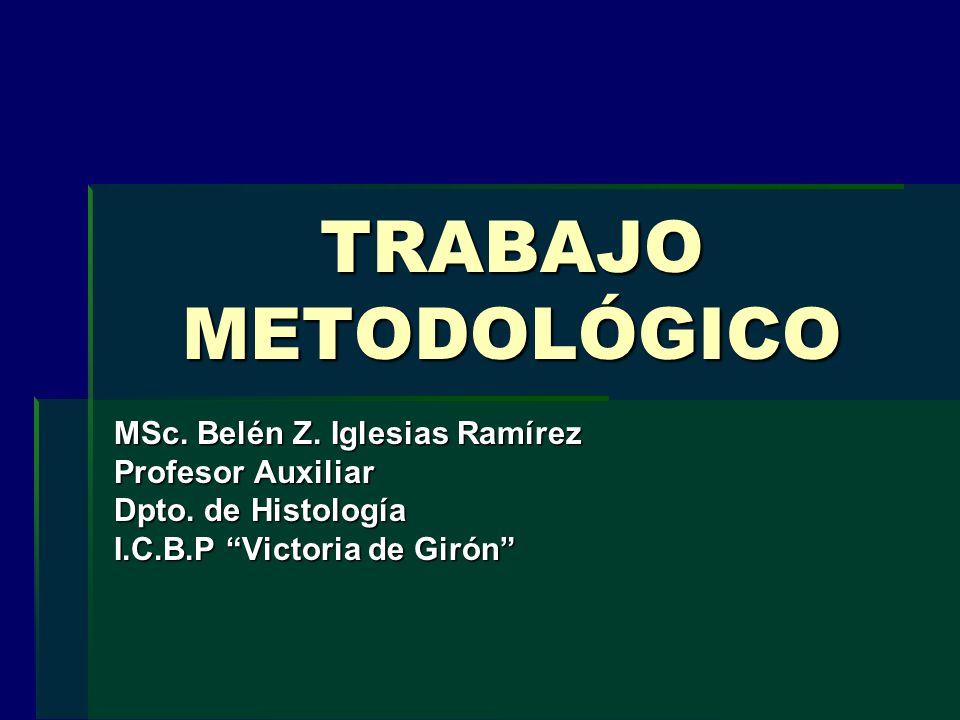 TRABAJO METODOLÓGICO MSc. Belén Z. Iglesias Ramírez Profesor Auxiliar